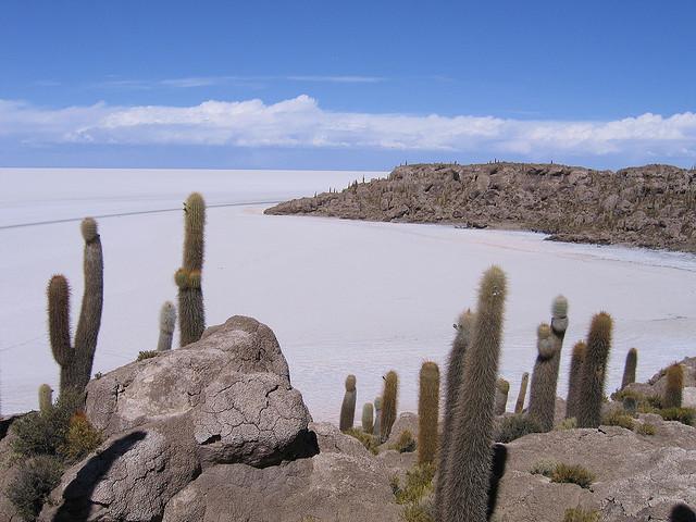 Spectacular natural view, from Salar de Uyuni-Bolivia