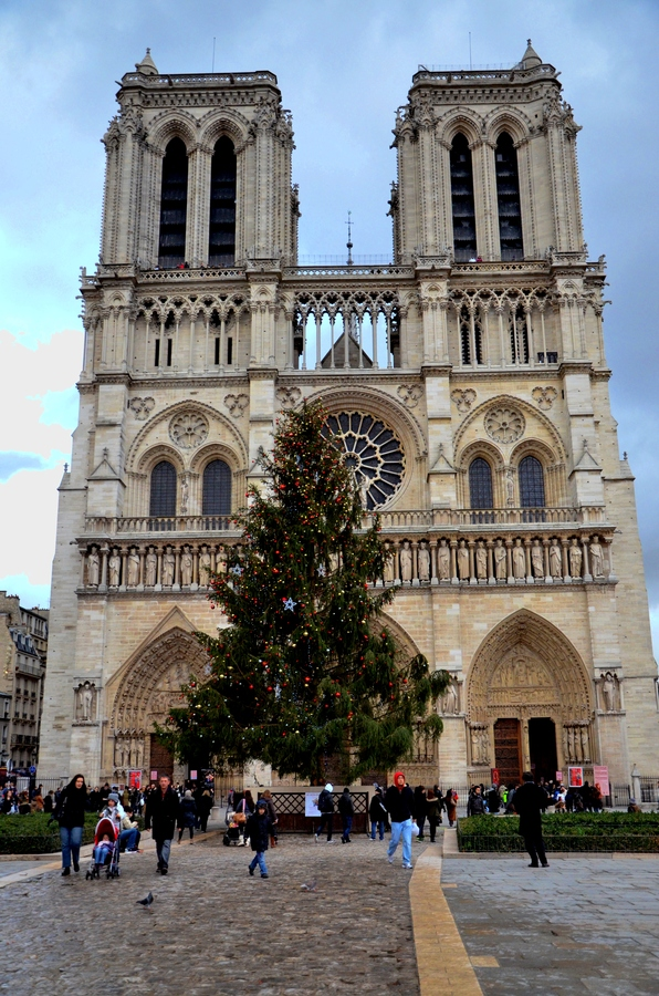 New Years Notre Dame