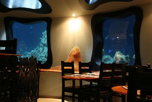 Red Sea Star Eilat