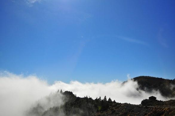 Teide lava