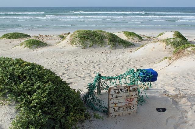 Mexico Santa Maria Beach The Top 5 Beaches In