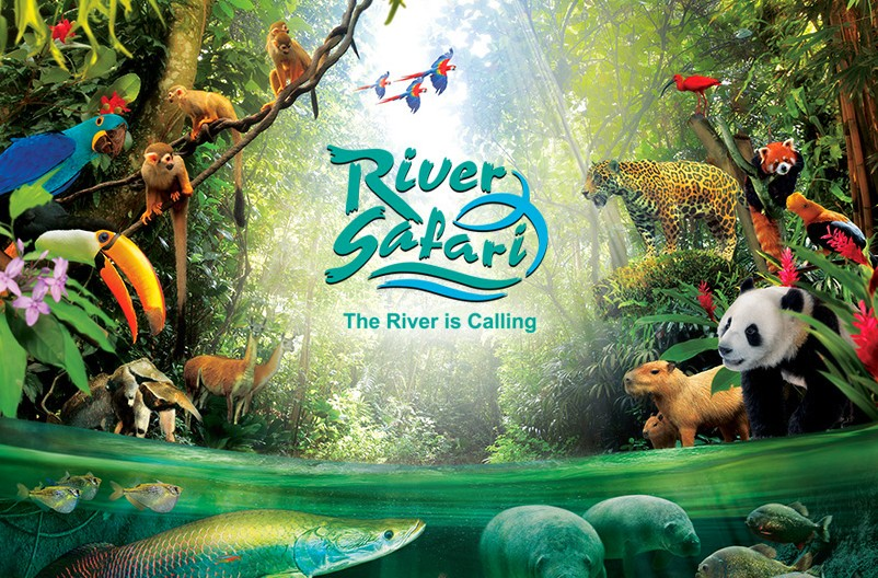 River Safari opens in Singapore on the first riverside park in Asia
