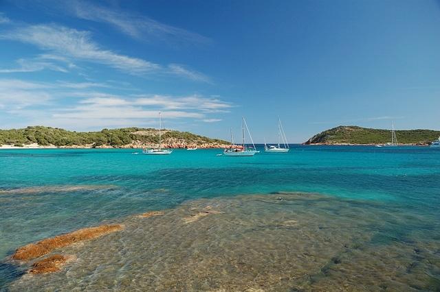 Corsica Rondinara