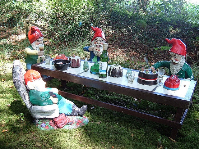 Gnome Cooking