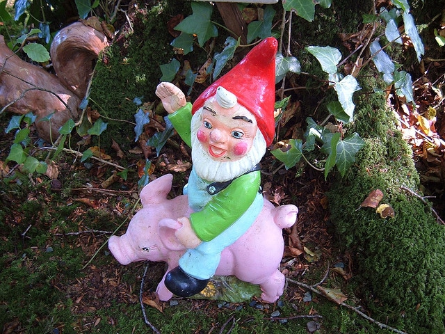 Gnome on the range! Another activity spotted at the Gnome Reserve in deepest Devon.