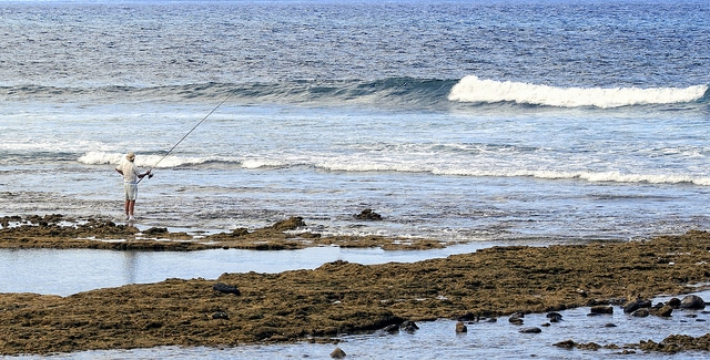 Playa de Las Americas Fisher