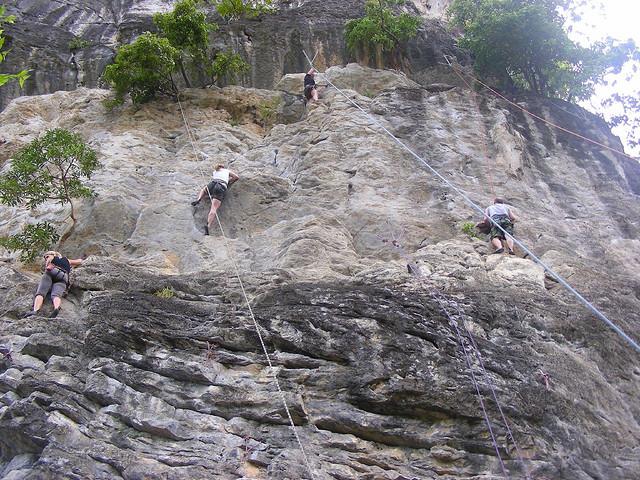 Rock ClimbingThailand