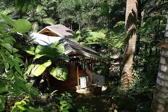 Daintree Secret - Rain forest house