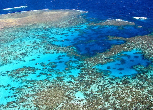 The colours of the barrier reef