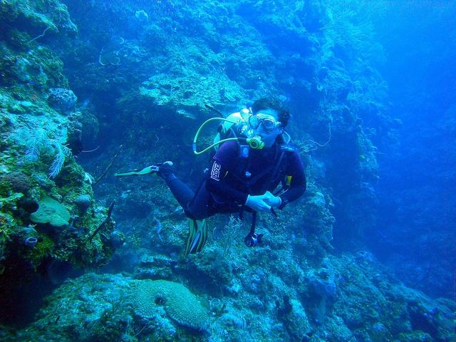 Diving in Maria la Gorda