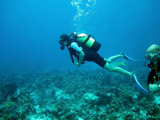 Diving in the Bay of Pigs