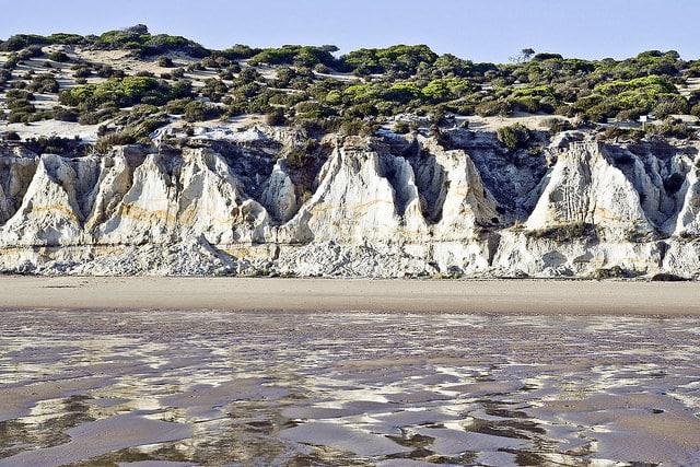 The dunes ecosystem