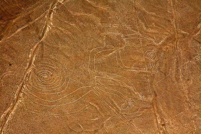 Nazca's spiral monkey