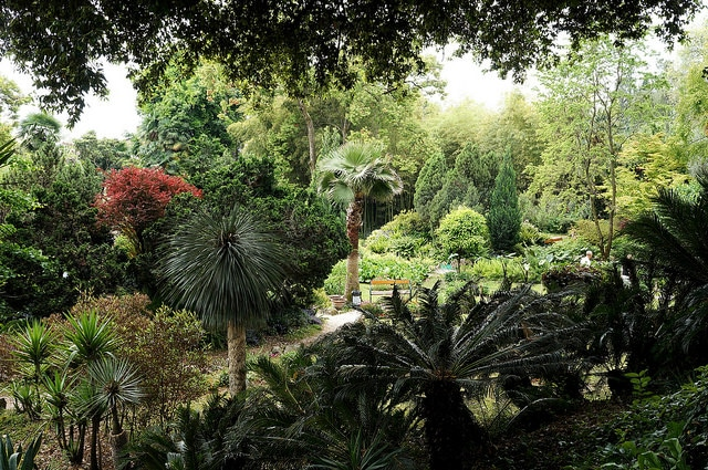 Botanical Gardens, Lombardy
