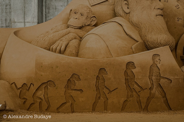 Darwin and its evolution theory sculpture
