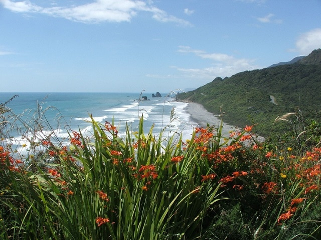 NZ West Coast beach