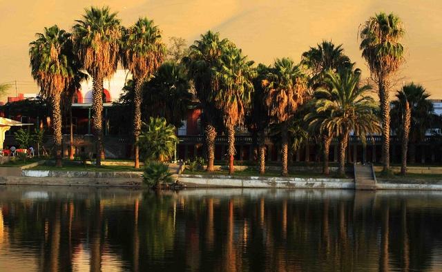 The oasis lagoon
