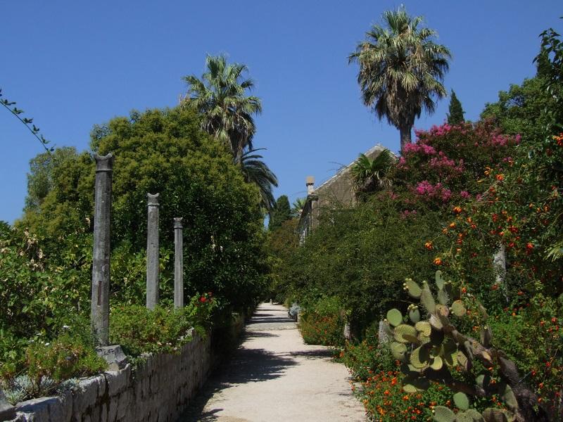 The Trsteno Arboretum