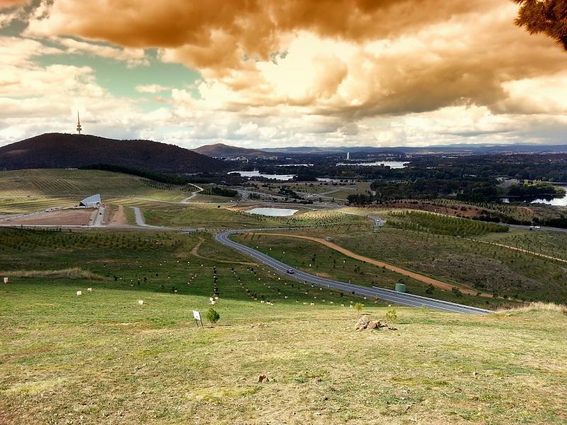 Canberra Fields