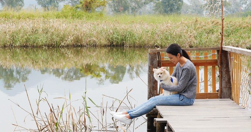 Woman be with her dog in countryside