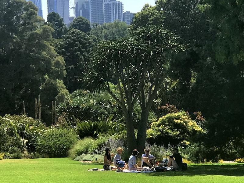 picnic-at-the-parkmelbourne-australia